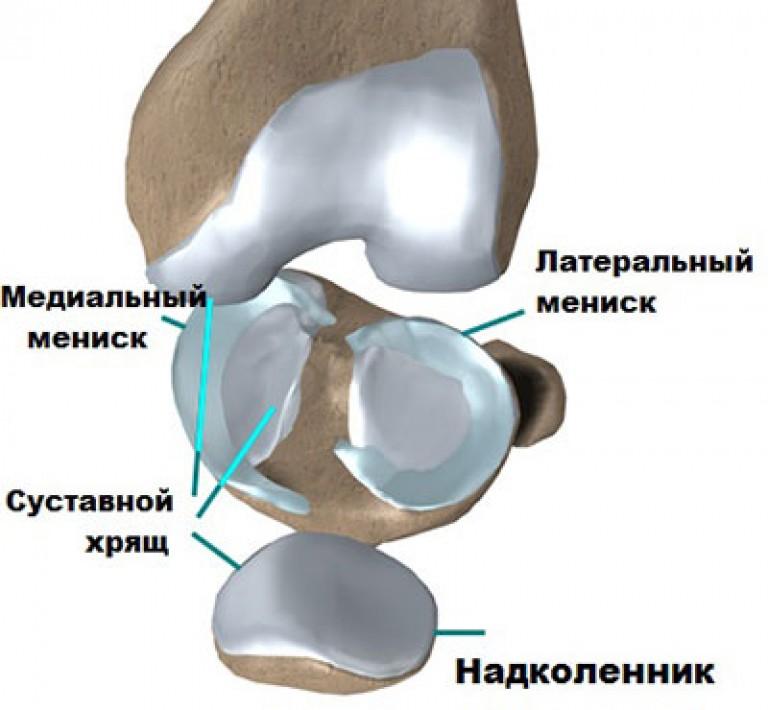 csontok és calcaneus artrosis kezelése hüvelykujj fájdalom lelki okai