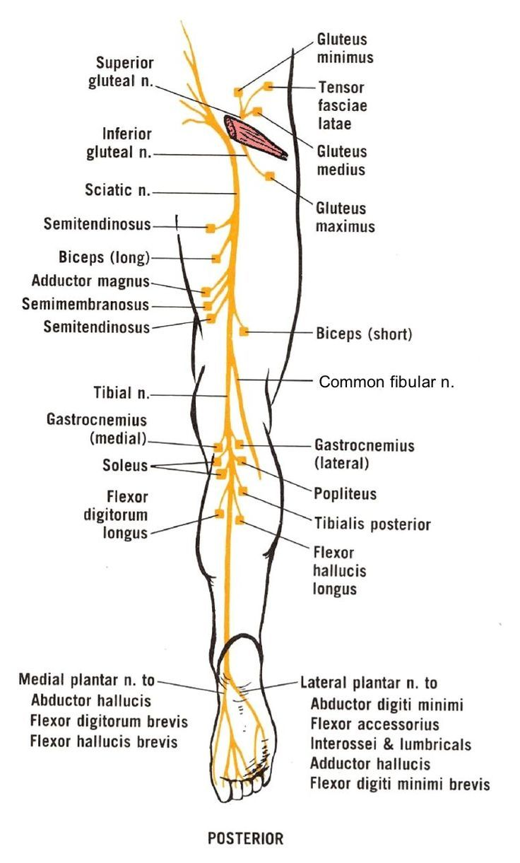 a sacroiliac ízületek gyulladása)