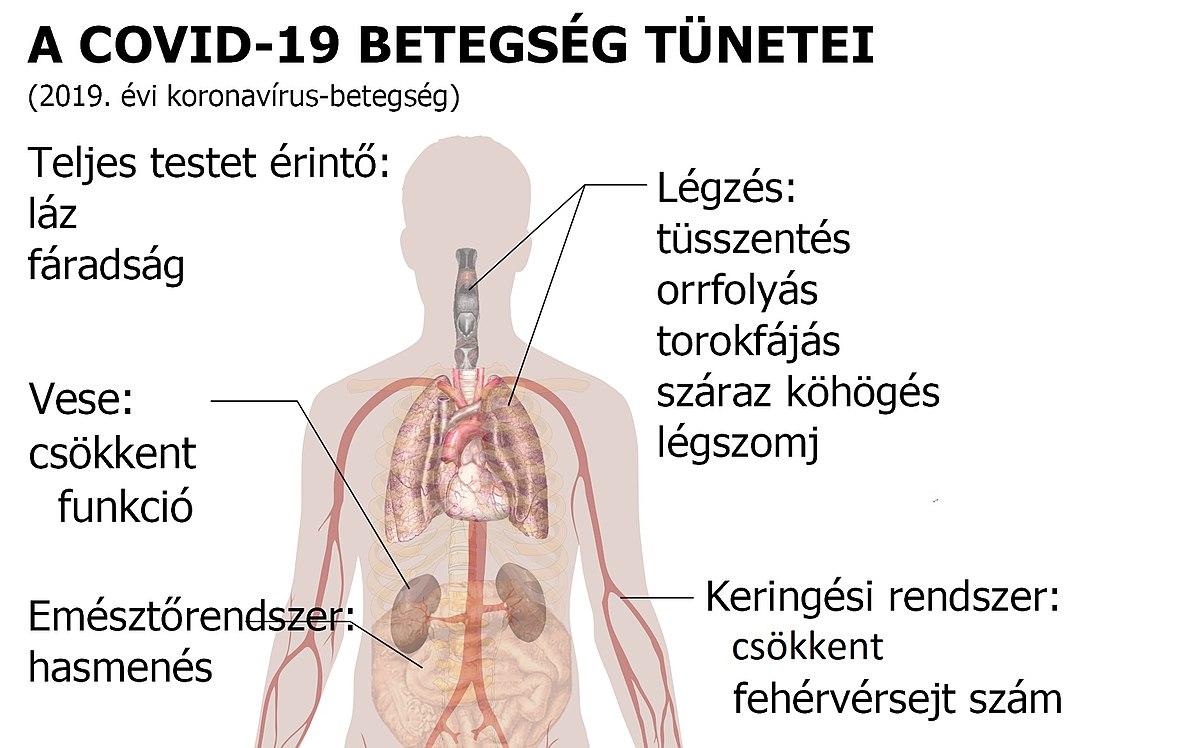 lábízületi betegség és annak kezelése)
