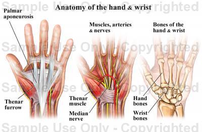 csuklóízületi fájdalom mindkét kézben