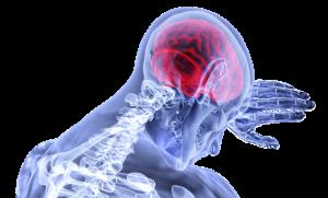 Kókúszolajjal a Parkinson-kór ellen? - Biokultúra