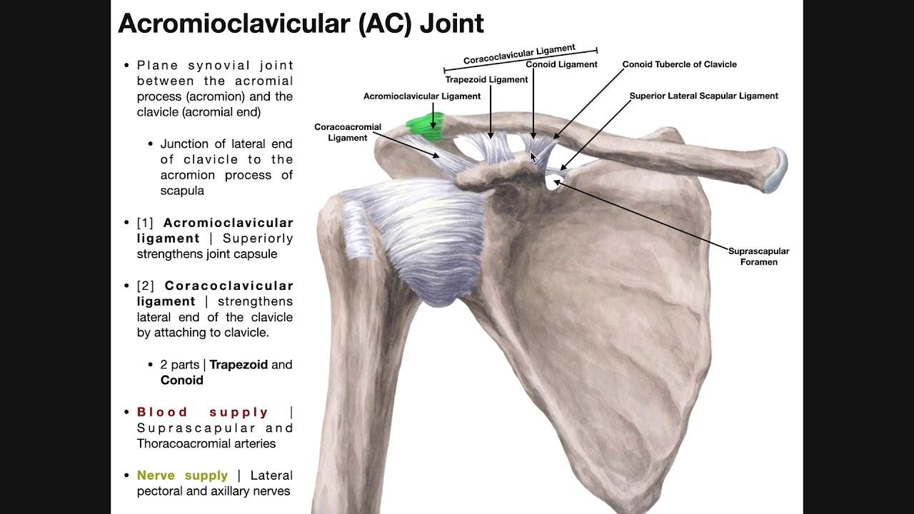 clavicularis arthrosis kezelés)