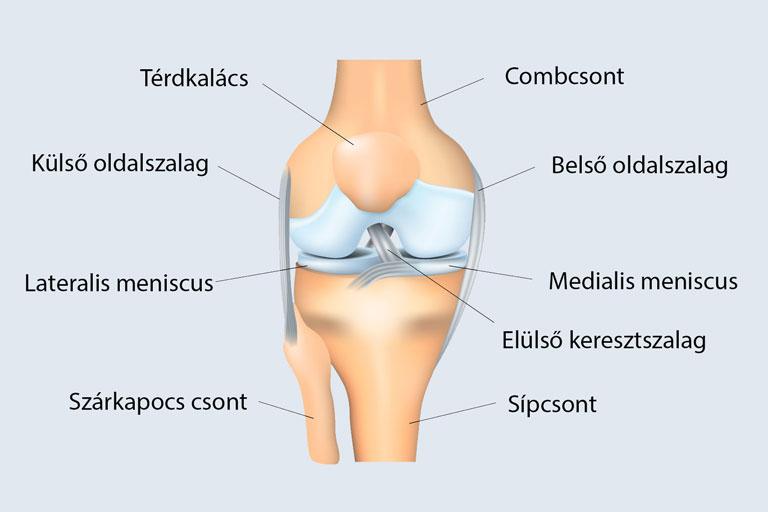 meniszcus sprain térdkezelés