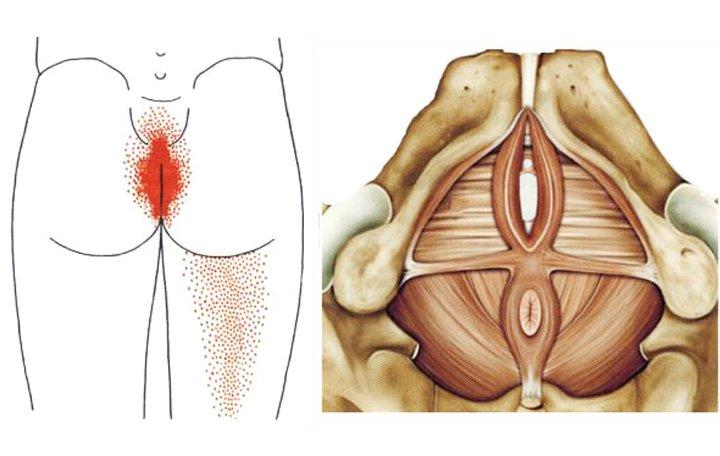 izom- és ízületi fájdalmak a test egész területén)