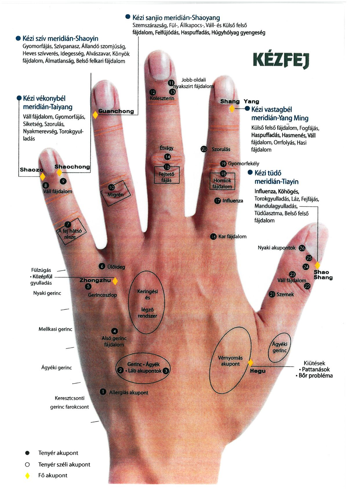 akupunktúrás fájdalom