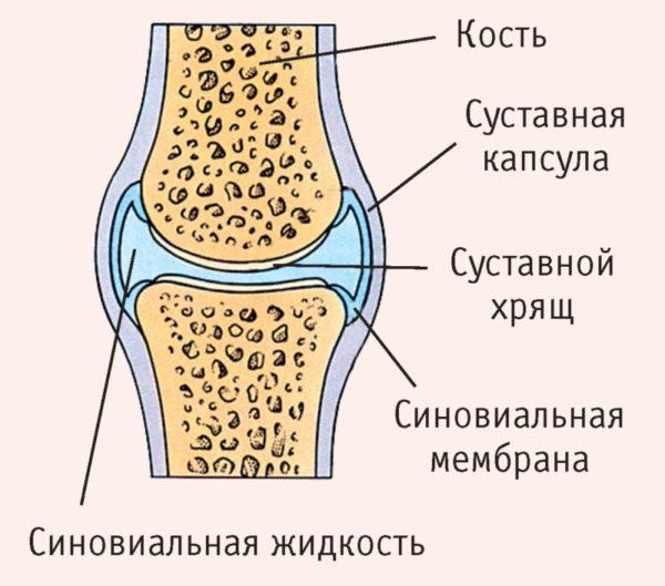 atlanto okklitális ízületi ízületi gyulladás)
