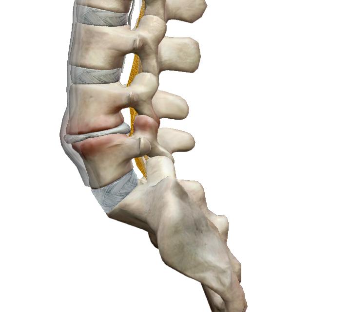 milyen gyógyszereket kell alkalmazni térd osteoarthritis esetén milyen ízületi gyulladásos kezelést milyen gyógyszerekkel