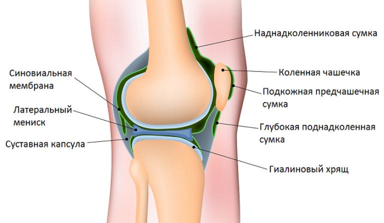 a könyökízület izomszakadása osteoarthritis symptoms and signs
