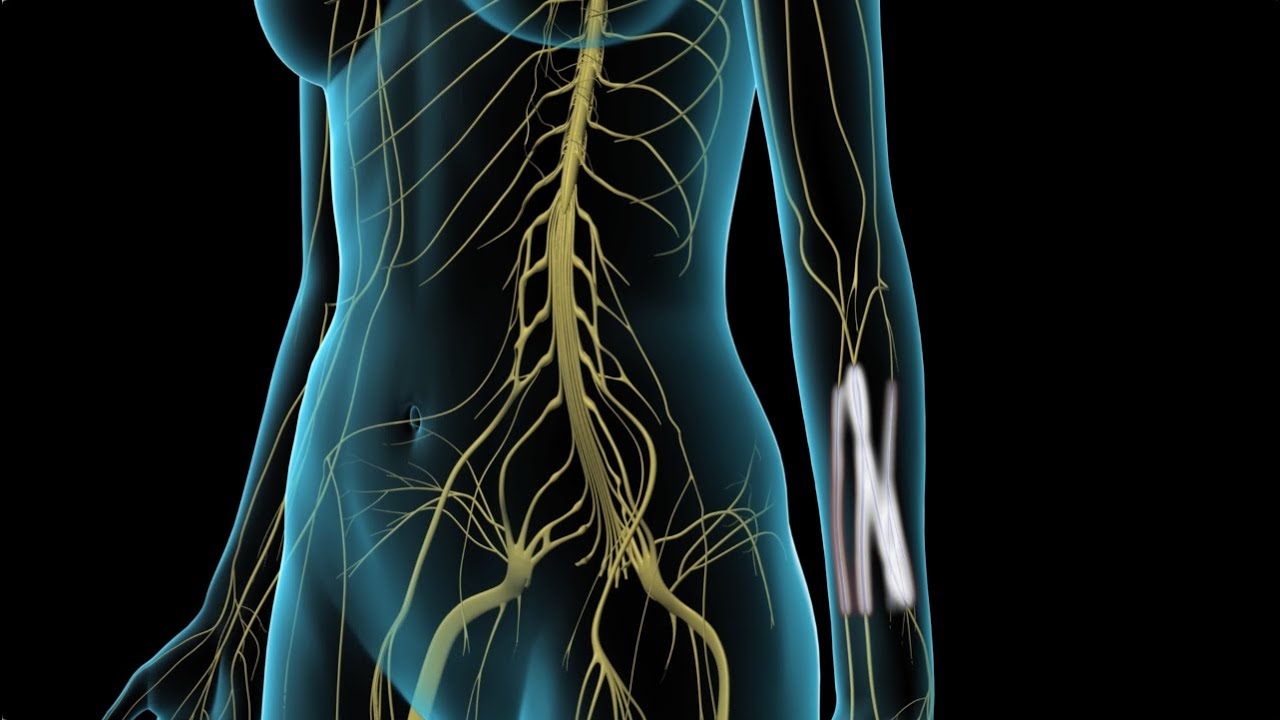 arthrosis kezelés chernihiv