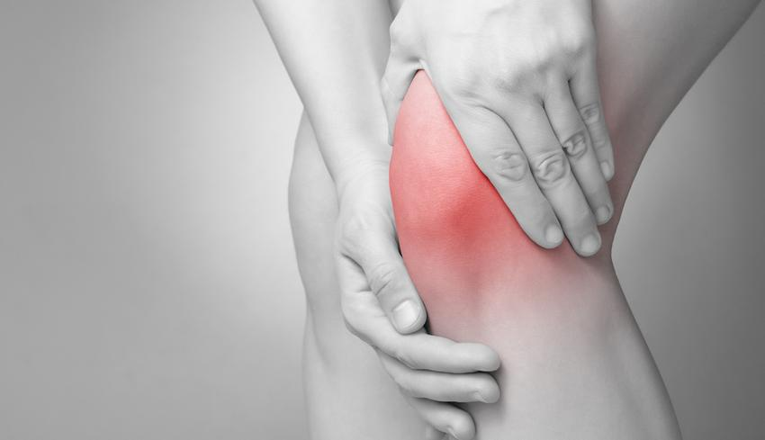 kutyaszőr kezelés artrózis esetén