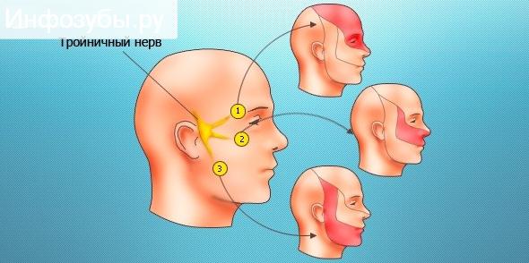 fájdalom a száj nyitásában az ízületben gevkamen kenőcs az oszteokondrozishoz