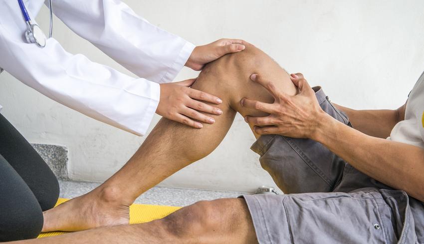 fa tetvek ízületi fájdalmak kezelésére horvát együttes kezelés