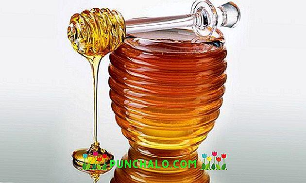 mézből származó kenőcsök ízületi fájdalmak kezelésére)