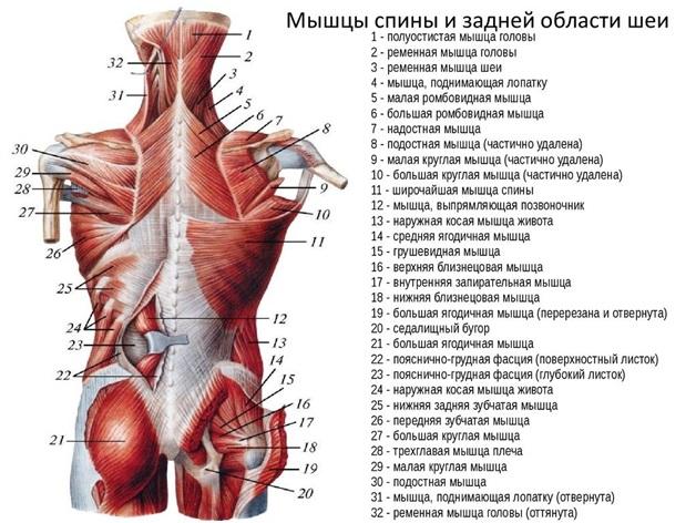 enyhítse a térd súlyos gyulladását