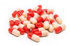 a porc anyagcserét szabályozó kondroprotektív gyógyszer)