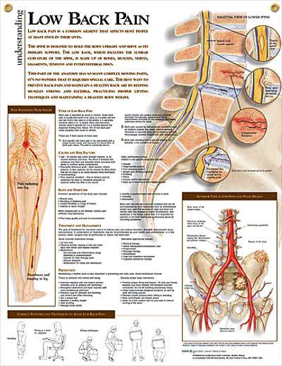 menopauza fájdalma a csípőízületekben