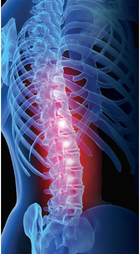 neve hip csípőbetegség