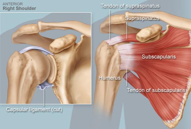 kéz a vállízület fáj, hogyan kell kezelni)