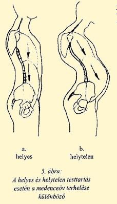 gyulladásos folyamatok kezelése az egész gerinc artrózisával)