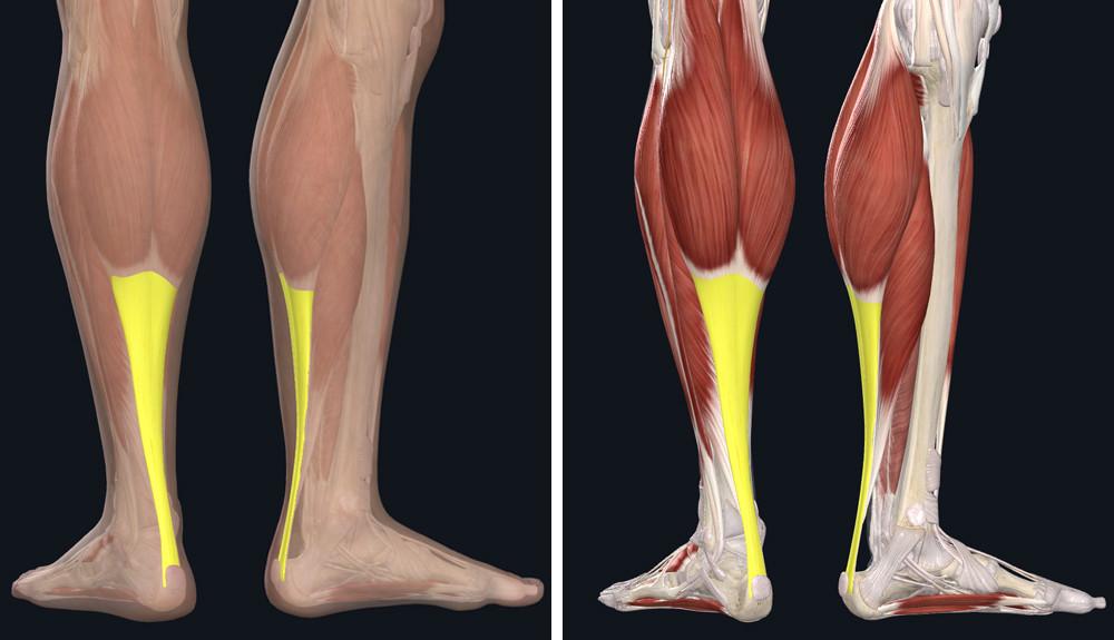 a boka futási sérülései