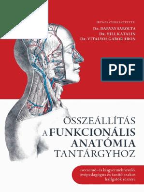 Állkapocs-ízületi terápia | cseszlovak.hu