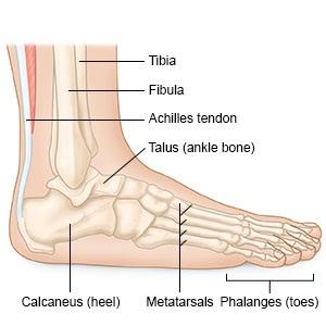 fájdalomcsillapítás, amikor a bokaízületben sétál