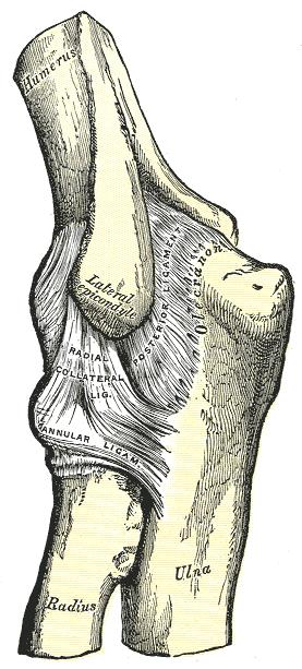 a könyökízület ízületi tünetei