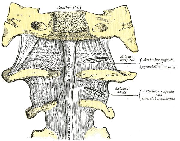 a sacroiliac ízület betegségei