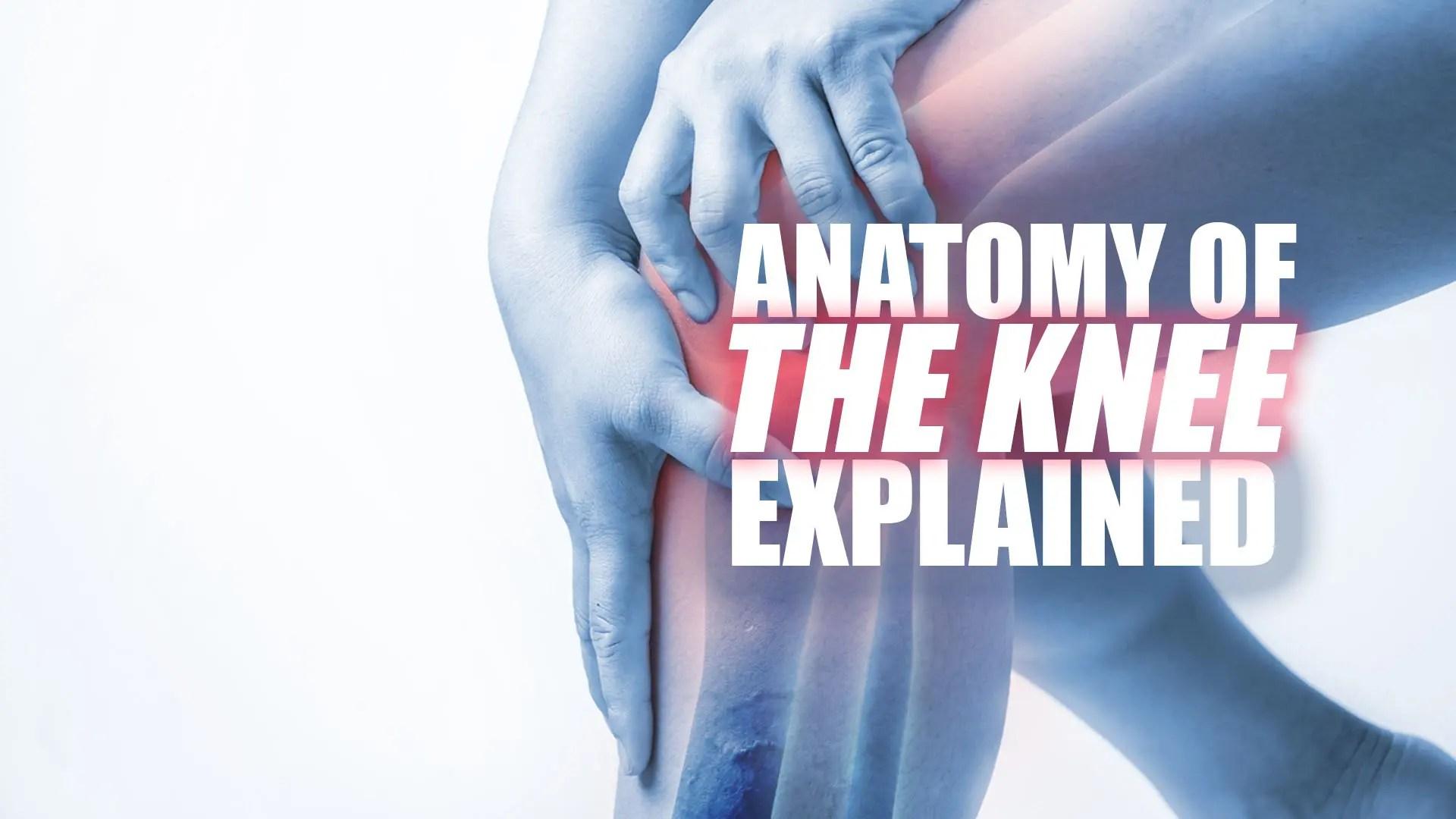 hogyan kezeljük a térd ligamentum károsodását)