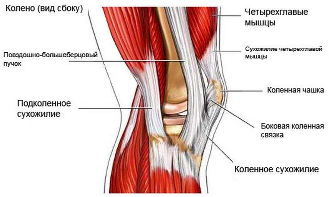mint a térdízület fájdalmainak kezelésére