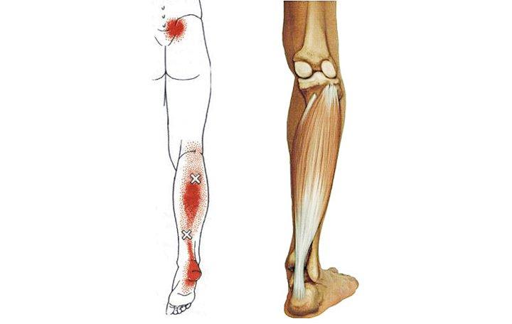 krónikus pielonephritis fájdalom az izmokban és az ízületekben)