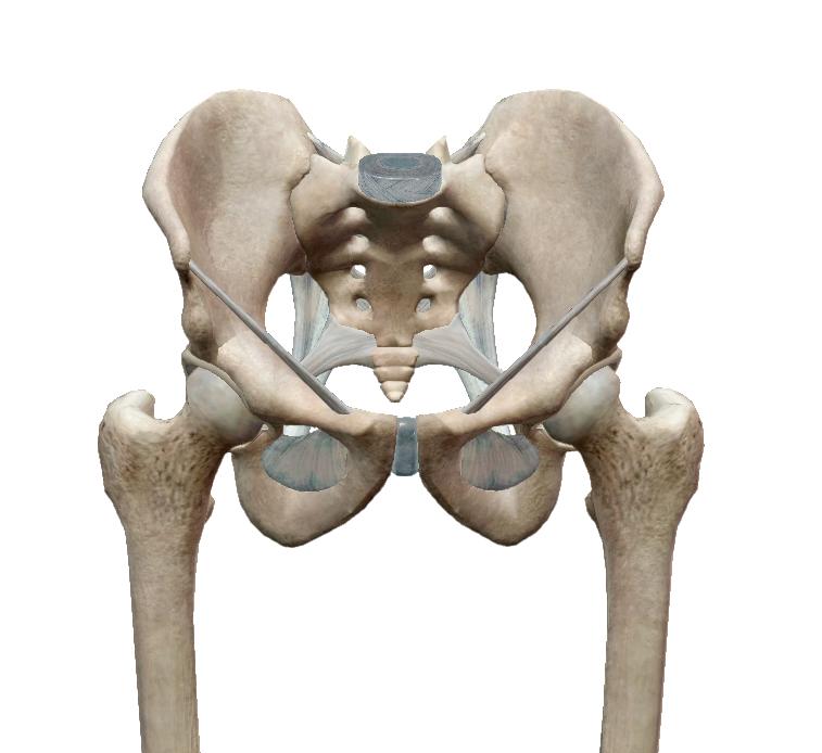 dőléskor a csípőízület fáj