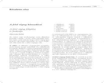 A szakroiliakális ízület károsodásai