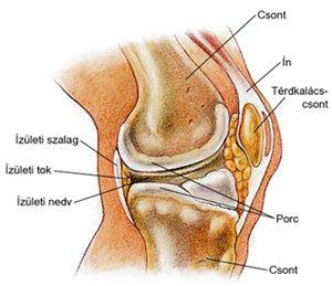 ízületek deformáló artrózisának kezelése