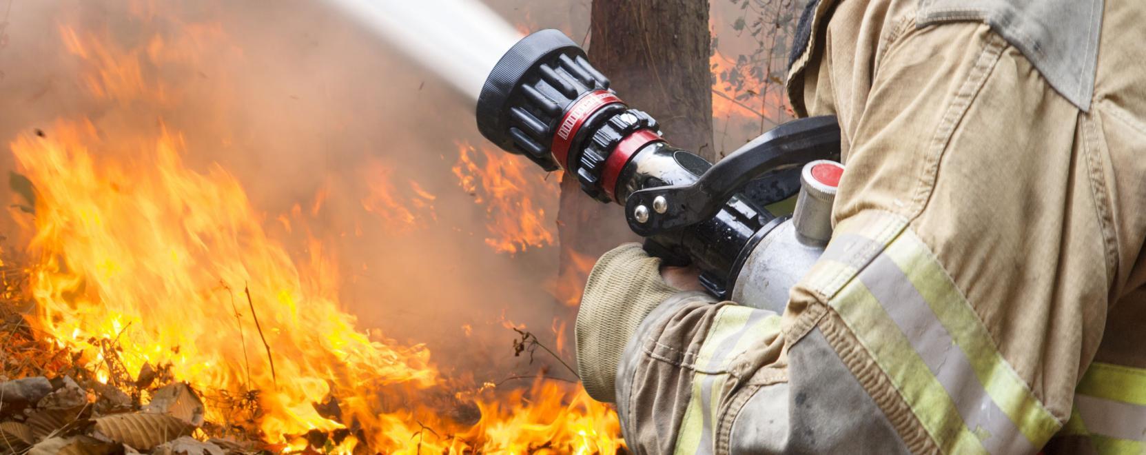 tűz közös kezelése)
