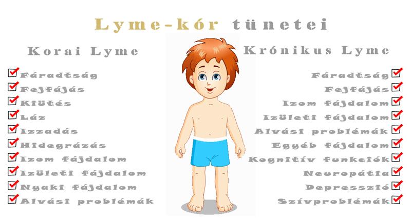 Lyme-kór tünetei és kezelése