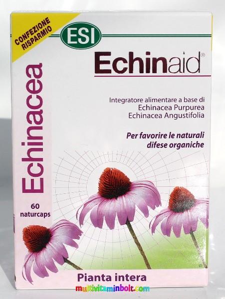 Echinacea - Kasvirág - ProVitamin Tudástár - ProVitamin Magazin
