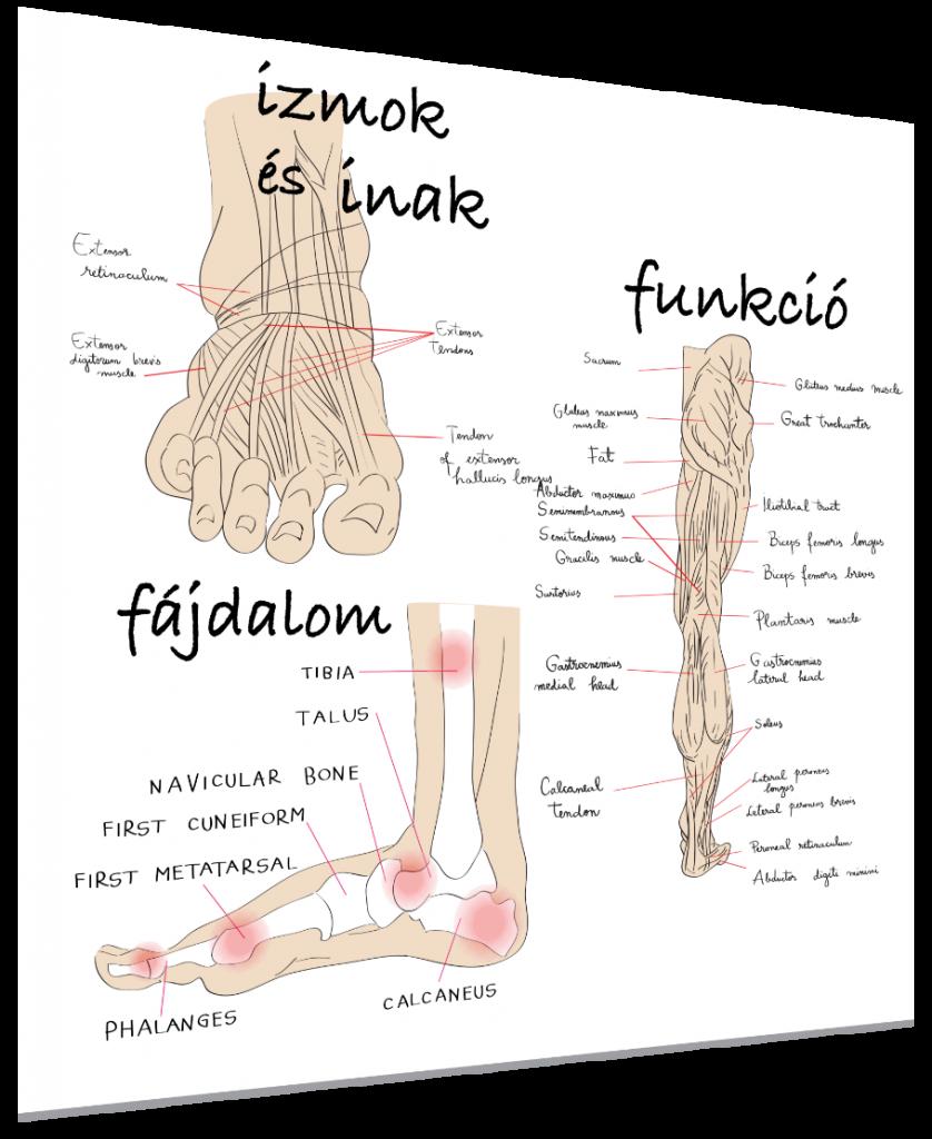a láb kezelésének rheumatoid arthrosisja