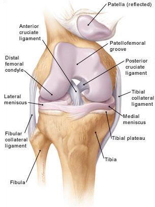 ízületi gyulladás a térdízület 3 fokát okozza kenőcsök fenékkel ízületi fájdalmak kezelésére