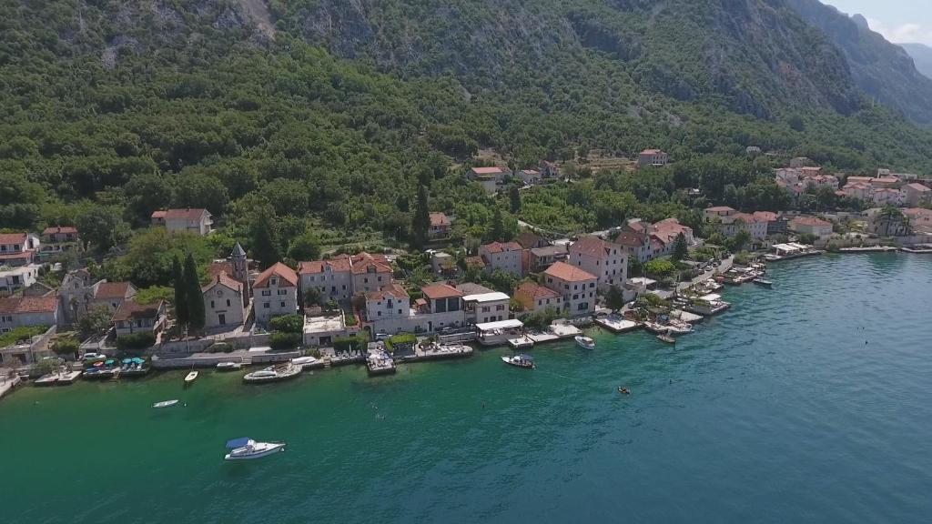 közös kezelés montenegro