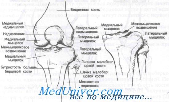 Fáj a háta felső része? Ezért!