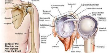 vállízületek ízületi kezelése mi a veszélyes artrózis a könyökízület