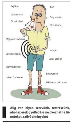 ízületek és erek kezelése)