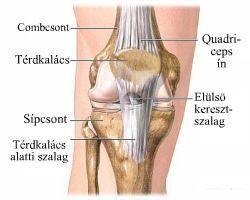 ízületi sérülések jelei)