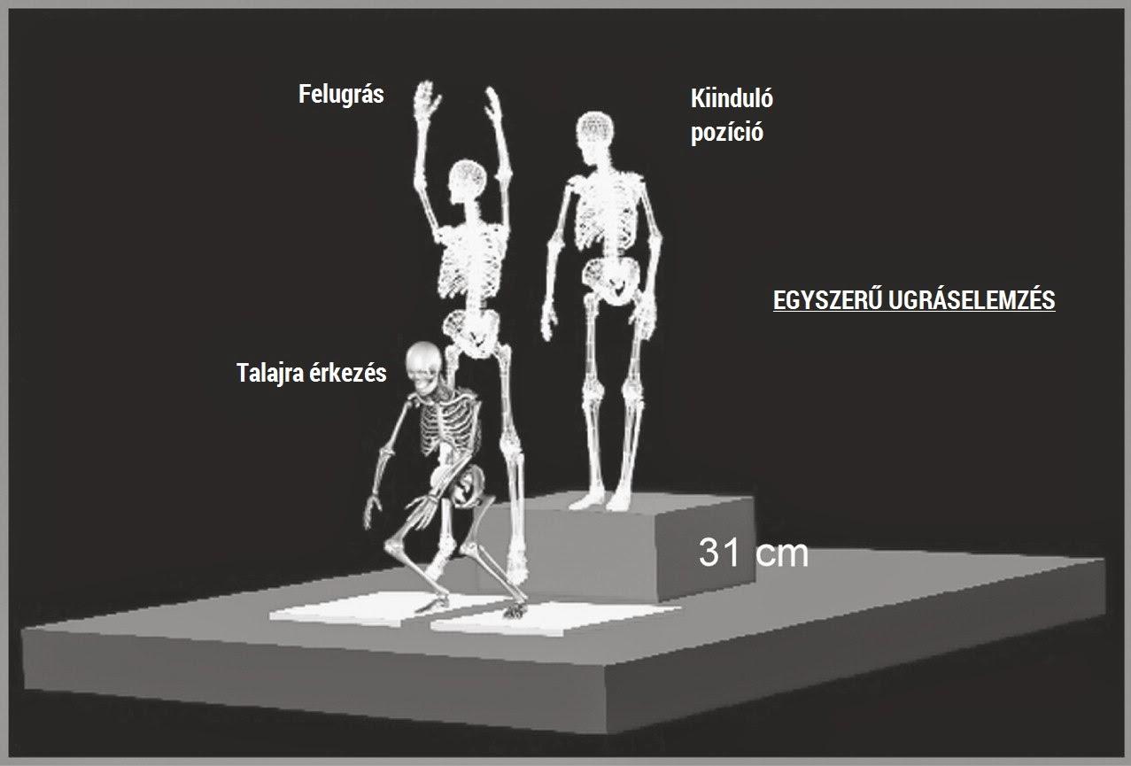 az egész test ízületi és gerincfájdalmai)