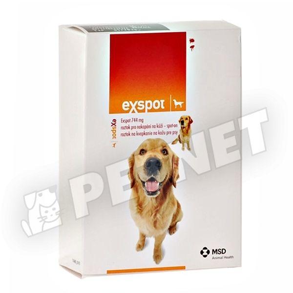 Vitaminok kutyák számára: egészségkárosodás hiánya - Tartalom July