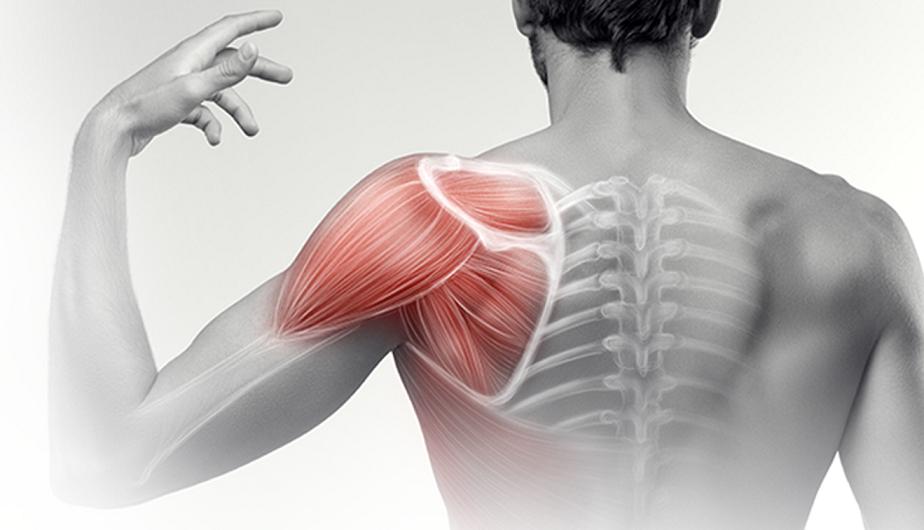 váll fájdalom fizioterápiás kezelés